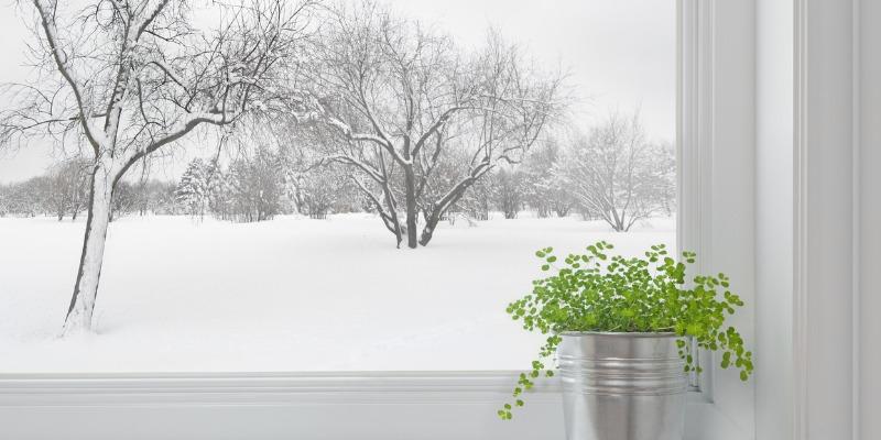 Winter Landscape through window